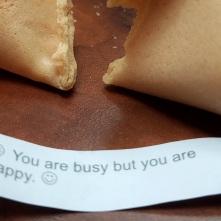 fortunecookiehappybutbusy