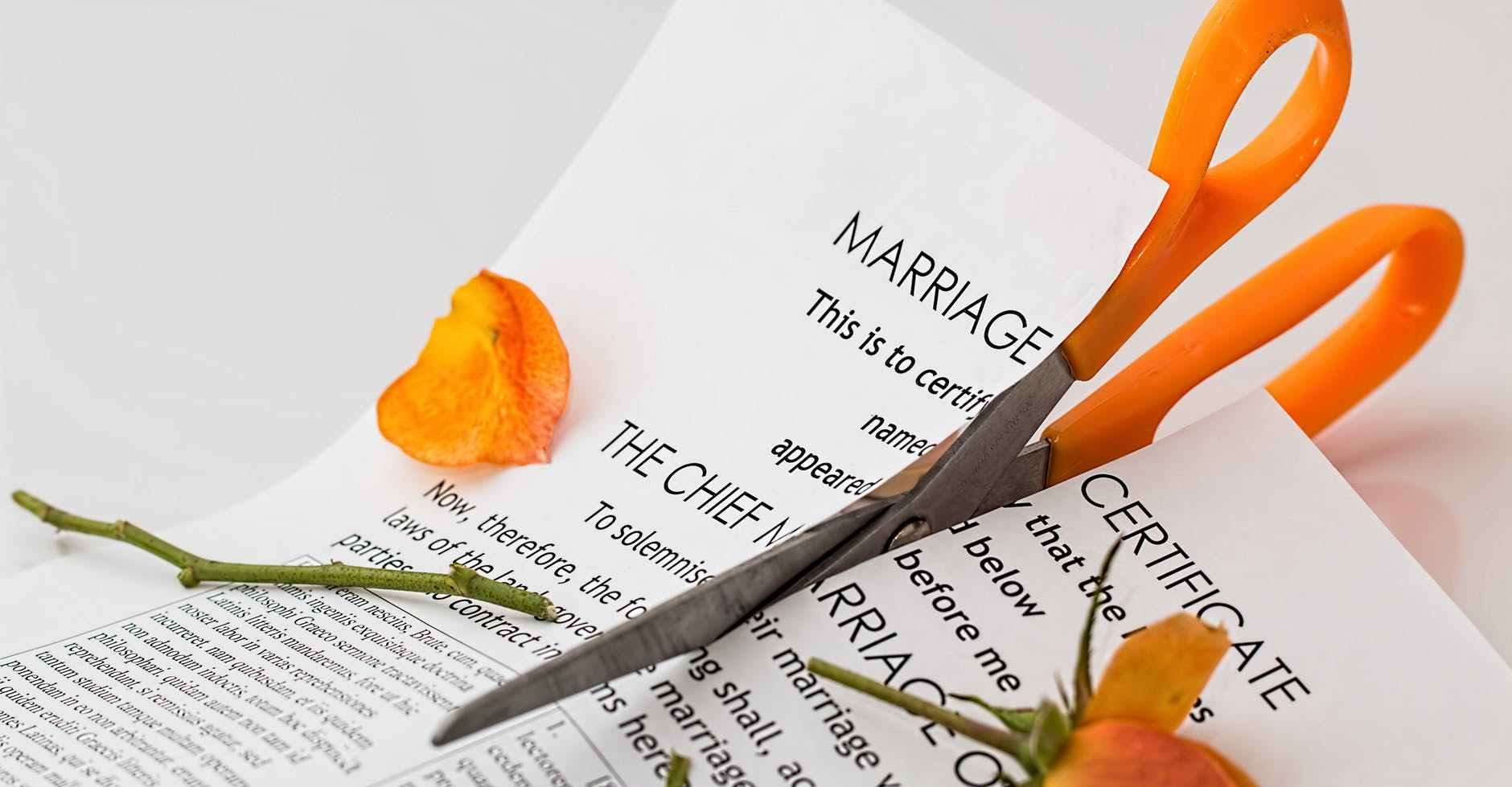 "Orange scissors cutting an orange rose and a piece of paper that starts with the words ""Marriage Certificate: This is to certi-fy that the .."""